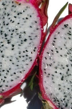 Dragonfruitbinnenkant
