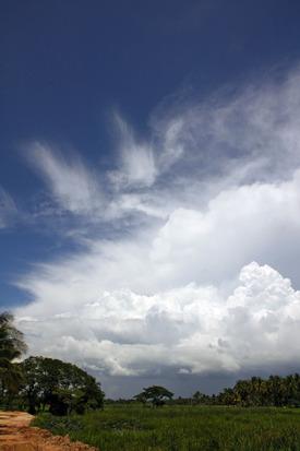 Cumulus_1