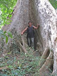 Soooo_das_een_grote_boom