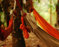 Monks_hammock_web